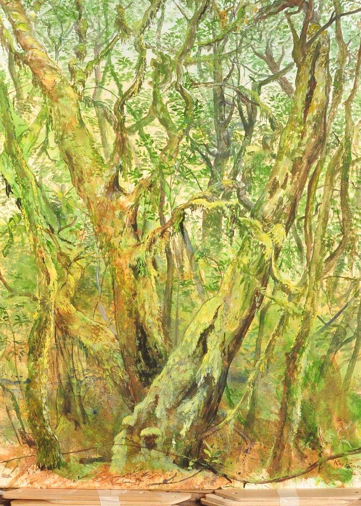 El Cedro de La Gomera