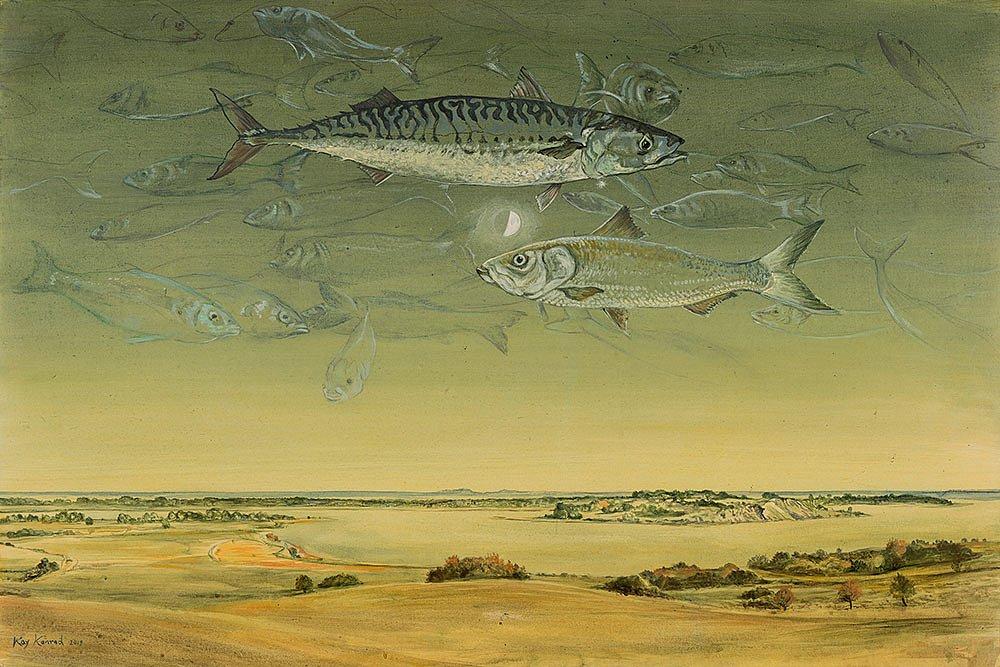 Ein Hering und eine Makrele